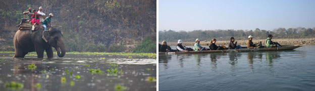 Activities at Chitwan National Park